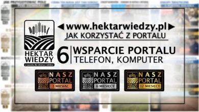 Photo of JAK KORZYSTAĆ Z PORTALU | 6 [WSPARCIE PORTALU – TELEFON, KOMPUTER]