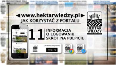 Photo of INFORMACJE O LOGOWANIU, SKRÓT NA PULPICIE | JAK KORZYSTAĆ Z PORTALU | 11