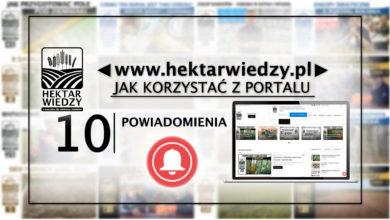 Photo of POWIADOMIENIA | JAK KORZYSTAĆ Z PORTALU | 10